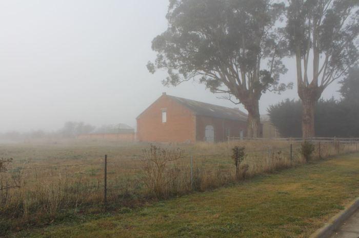 Kempton in the morning fog.