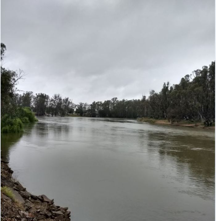 Murray River at Tocumwale